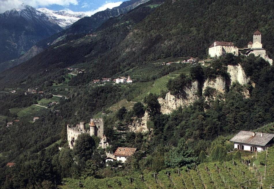 wineaxe.ru italia wine